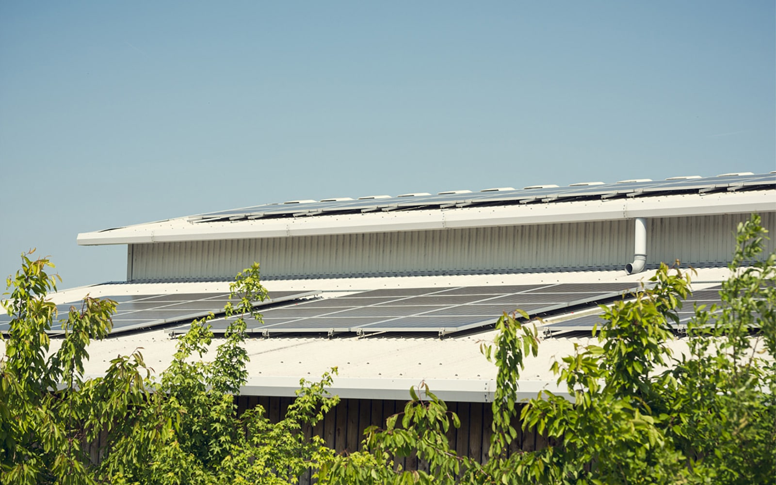The Hadlow Estate - Solar Panels